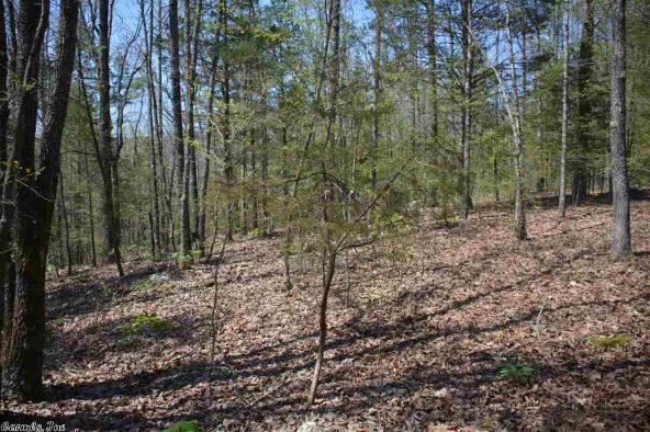 4.5 Ac Brownsville Rd., Greers Ferry, AR 72067 Photo 8