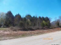 Home for sale: 116 Greenbrook Dr., Hazel Green, AL 35750