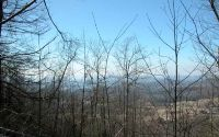 Home for sale: Cold Branch, Hayesville, NC 28904