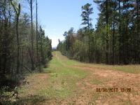 Home for sale: 02 Huffman Bridge Rd., Lattimore, NC 28655