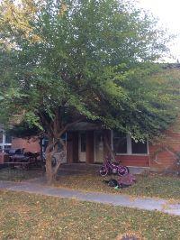 Home for sale: 1572 Woodland Avenue, Des Plaines, IL 60016