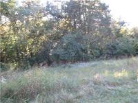 Home for sale: 0 Hunter Ln., Pulaski, TN 38478