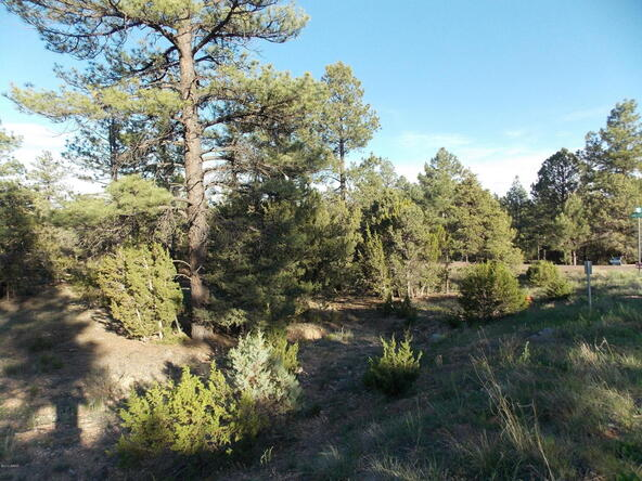 2945 Lodgepole, Overgaard, AZ 85933 Photo 6