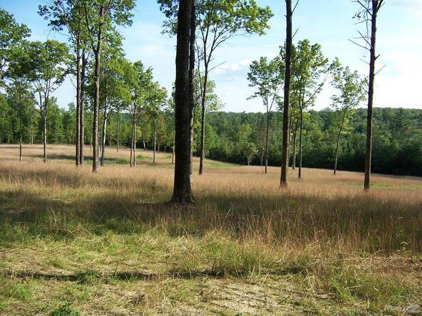 Spruce Creek, Jamestown, TN 38556 Photo 3