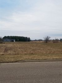 Home for sale: Lot 1 Jackson St., Pittsville, WI 54466