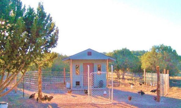 37750 W. Beau Hunter, Seligman, AZ 86337 Photo 8