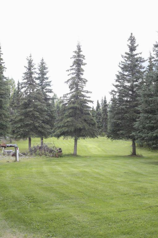 37615 State Park Rd., Soldotna, AK 99669 Photo 49