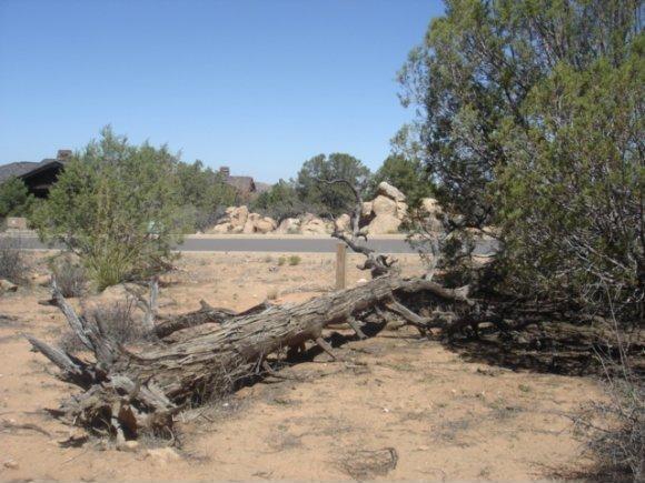 14480 N. Soza Mesa Ln., Prescott, AZ 86305 Photo 5