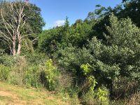 Home for sale: 0 Lot 4 Ridgeway (Ridge Rd.), Jackson, MO 63755