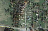 Home for sale: 1 del Ware Ln., Delaware, AR 72835