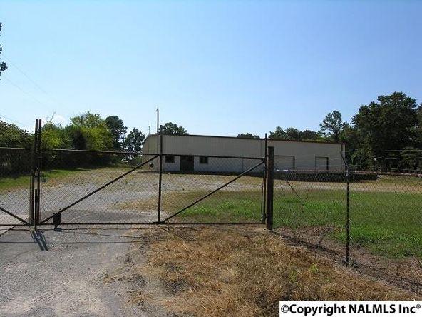 172 County Rd. 299, Trinity, AL 35673 Photo 7