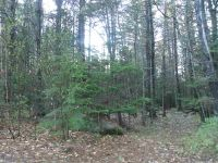 Home for sale: 00 Old Woods Rd., Tuftonboro, NH 03816