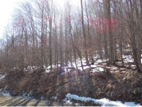 0 Quarry Rd. Rte. 29, Montrose, PA 18801 Photo 2