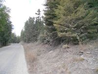 Home for sale: Nna Mosquito Creek Rd., Clark Fork, ID 83811