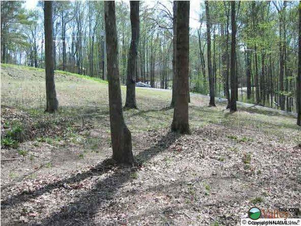 7 Cedar Ln., Guntersville, AL 35976 Photo 4