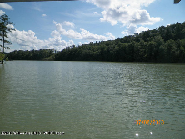 1202 Forest Service Rd., Arley, AL 35541 Photo 9