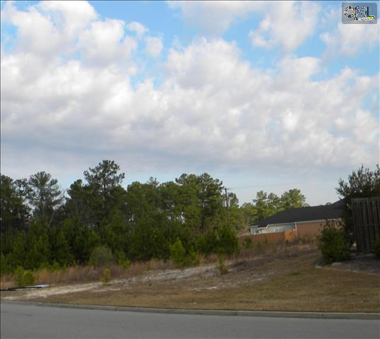 321/331 Rice Meadow Way, Columbia, SC 29229 Photo 11