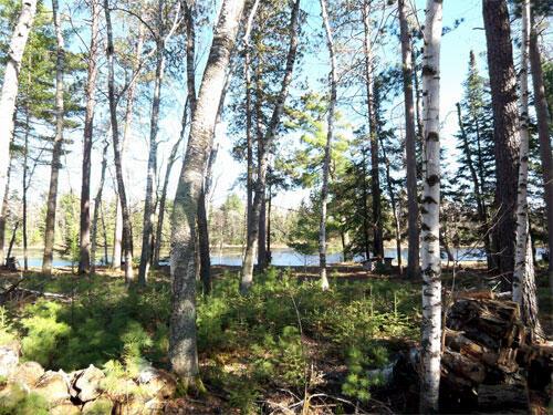 Lot 4 Eagles Ridge, Eagle River, WI 54521 Photo 7