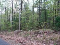 Home for sale: 0 Fort Mason Dr., Roanoke, VA 24018