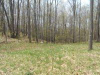 Home for sale: Tbd Lot 19 Of Nicolet, Long Lake, WI 54542