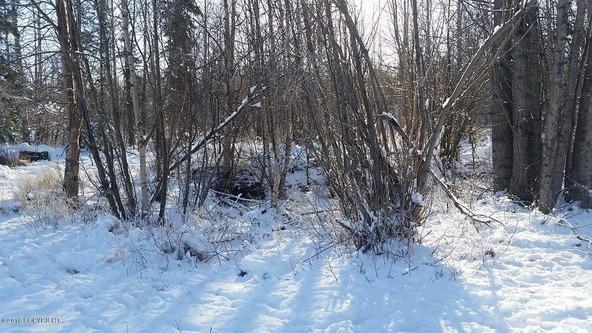 6321 N. Moose Meadows Rd., Wasilla, AK 99654 Photo 11