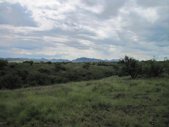 38155 S. Ruby Rd., Arivaca, AZ 85601 Photo 3