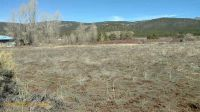 Home for sale: 1145 Nm State Rd. 75, Penasco, NM 87553