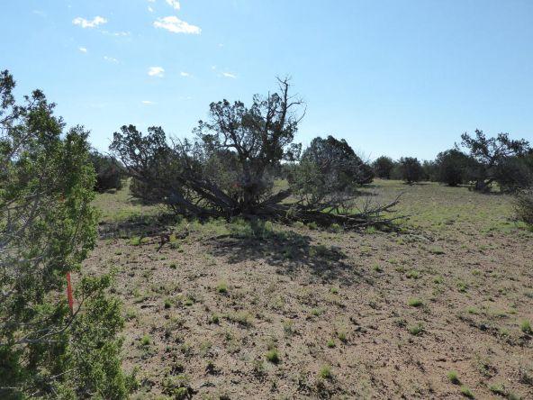 350 No Name, Ash Fork, AZ 86320 Photo 21