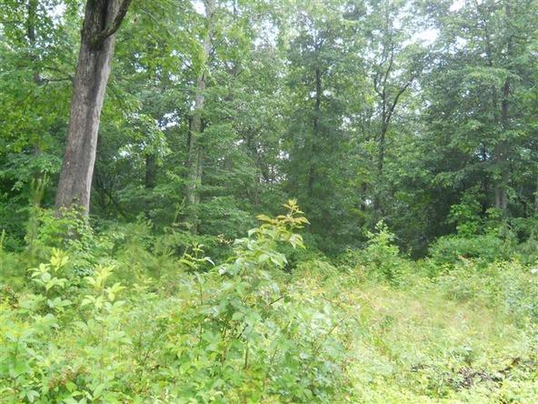 151 Close Lake Dr., Nancy, KY 42544 Photo 3