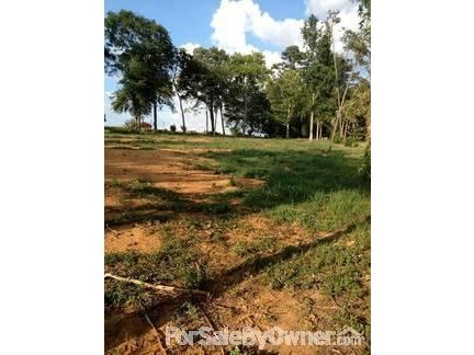 23 Robert Davis Rd., Langston, AL 35755 Photo 4