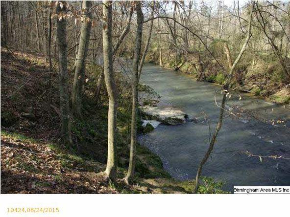 4 Horton Mill Rd., Oneonta, AL 35121 Photo 52