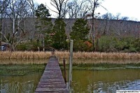 Home for sale: Boy Scout Rd., Scottsboro, AL 35769