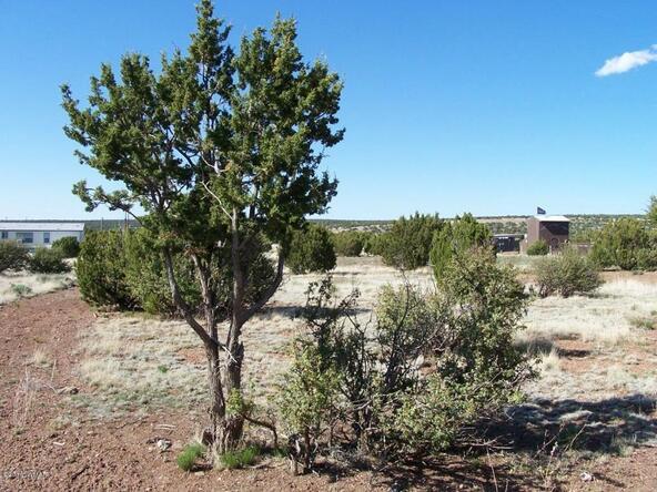 8482 Basalt Pl., White Mountain Lake, AZ 85912 Photo 10