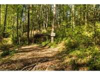 Home for sale: 135 Dogwood Hills Dr., Brevard, NC 28712