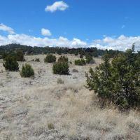 Home for sale: Tbd Oryx Way, Eagar, AZ 85925