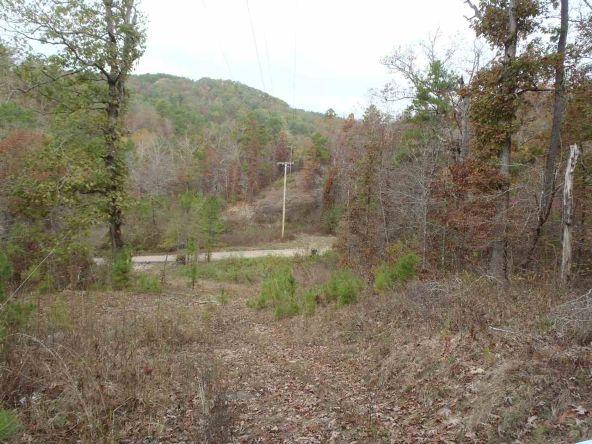 108 Buckthorn, Mountain Pine, AR 71956 Photo 11