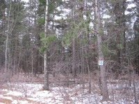 Home for sale: Lot 14 Marsh Ln., Mosinee, WI 54455