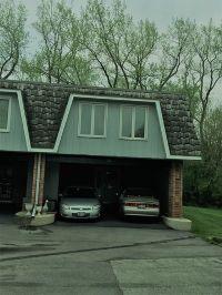 Home for sale: 13 Cour St. Tropez, Palos Hills, IL 60465