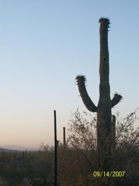 2159 W. Wahissa Trail, Queen Creek, AZ 85142 Photo 5