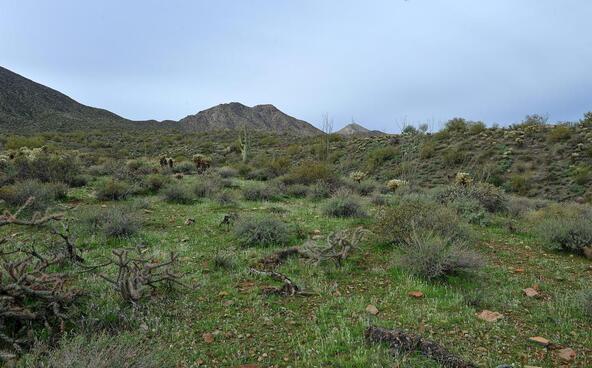13929 E. Big Horn Parkway, Fountain Hills, AZ 85268 Photo 11