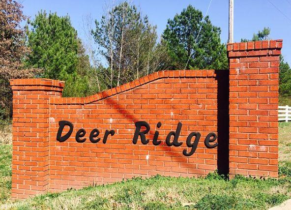 20 Deer Run Cr, Rogersville, AL 35652 Photo 2