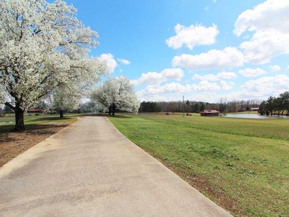 3510 Colburn Mill Rd., Littleville, AL 35653 Photo 32