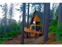 Home for sale: 9639 Elliott Dr., Cobb, CA 95426