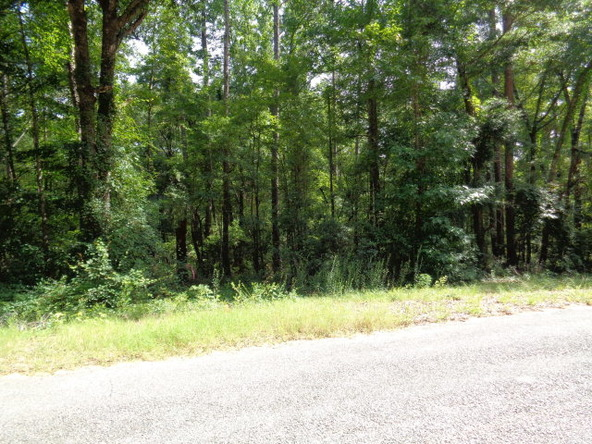 6 Lots Pinedale Dr., Abbeville, AL 36310 Photo 1
