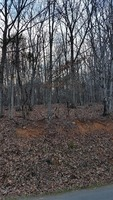 Home for sale: Magnolia Rd. Lot 4, Bedford, VA 24523