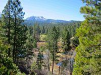 Home for sale: 368 Smith Creek Rd., Graeagle, CA 96103