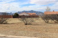 Home for sale: E. Christmas Tree (4 Lots), Pearce, AZ 85625