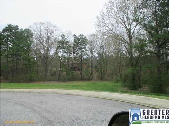 120 Sherwood Pl., Pell City, AL 35128 Photo 9