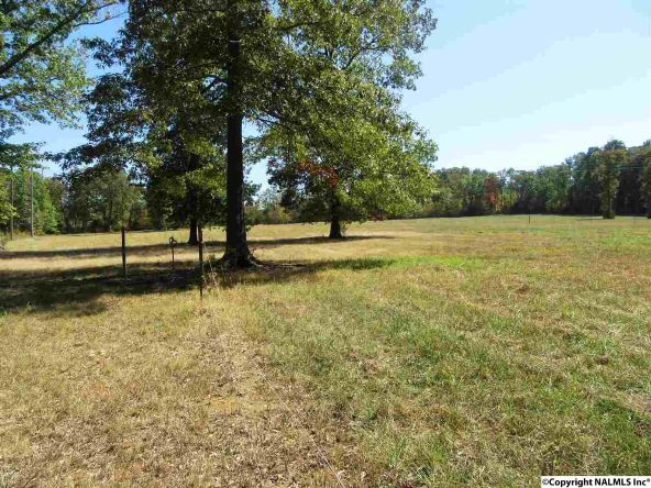 1279 Bethel Rd. S.E., Priceville, AL 35603 Photo 33