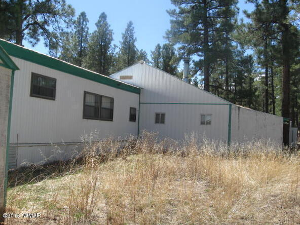 38730 Hwy. 373, Greer, AZ 85927 Photo 12